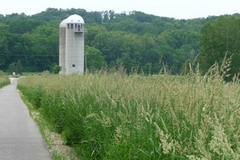 Roselle-park-silos-and-bike-path