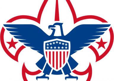 Bsa Corporate Logo 1000Px