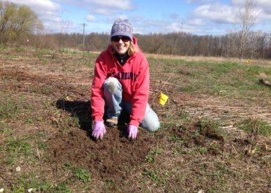 stewardship-penny-planting